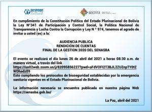 Audiencia Pública de Rendición de Cuentas final de Gestión 2020 SENASBA